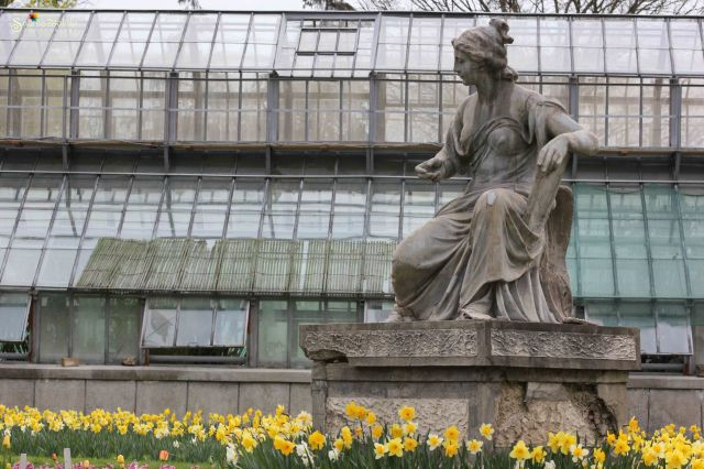 Statuie&narcise Gradina Botanica Cluj