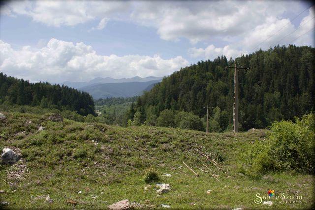 Valea de Pesti acces