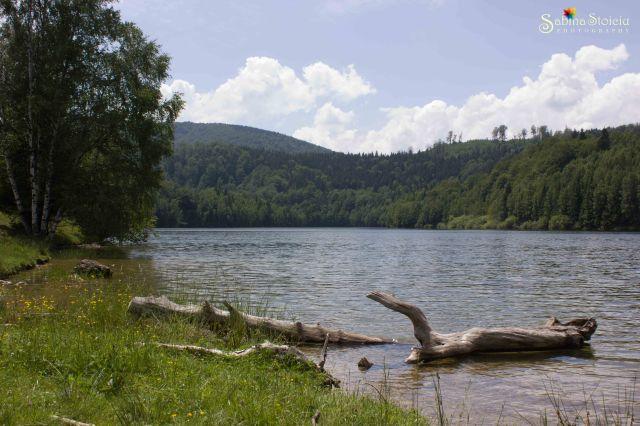 Valea de Pesti lacul